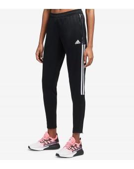 Pantalon Adidas Tiro 21 track Femme