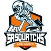 AHMS - Sasquatchs